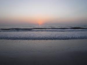 sunrise jax